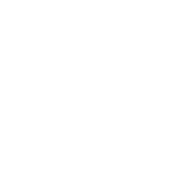 Realisapix